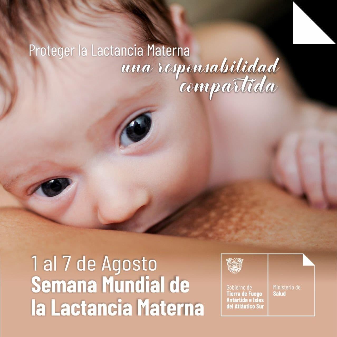 Profesionales médicos destacan que la lactancia materna es la fuente de múltiples beneficios